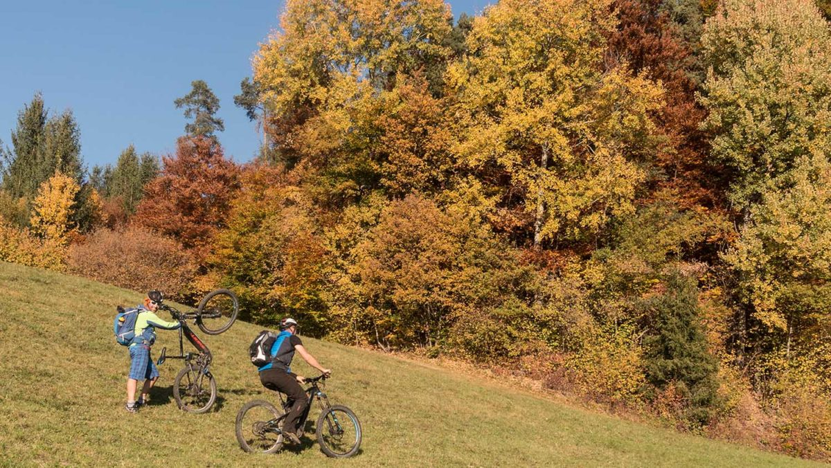 Herbst - Autumn - autunno - Burning dolomites with the bike